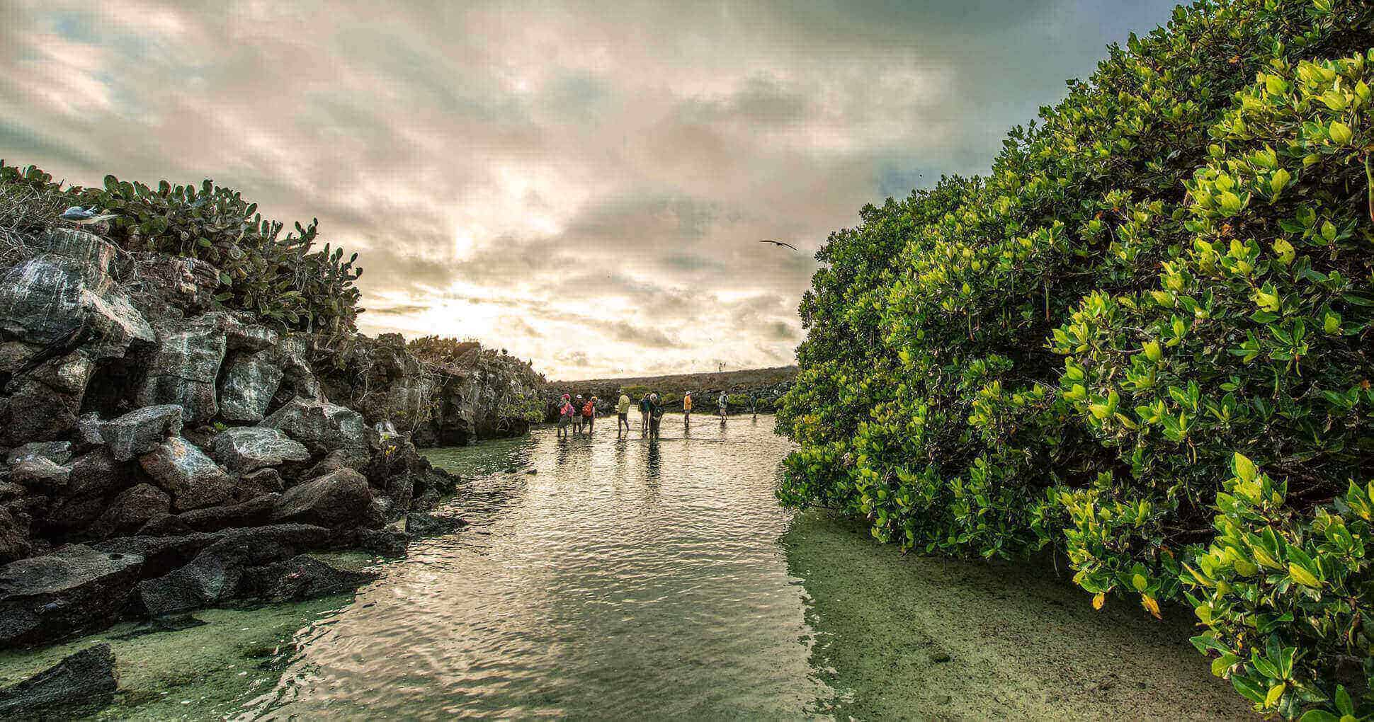 Darwin Bay, Genovesa Island.