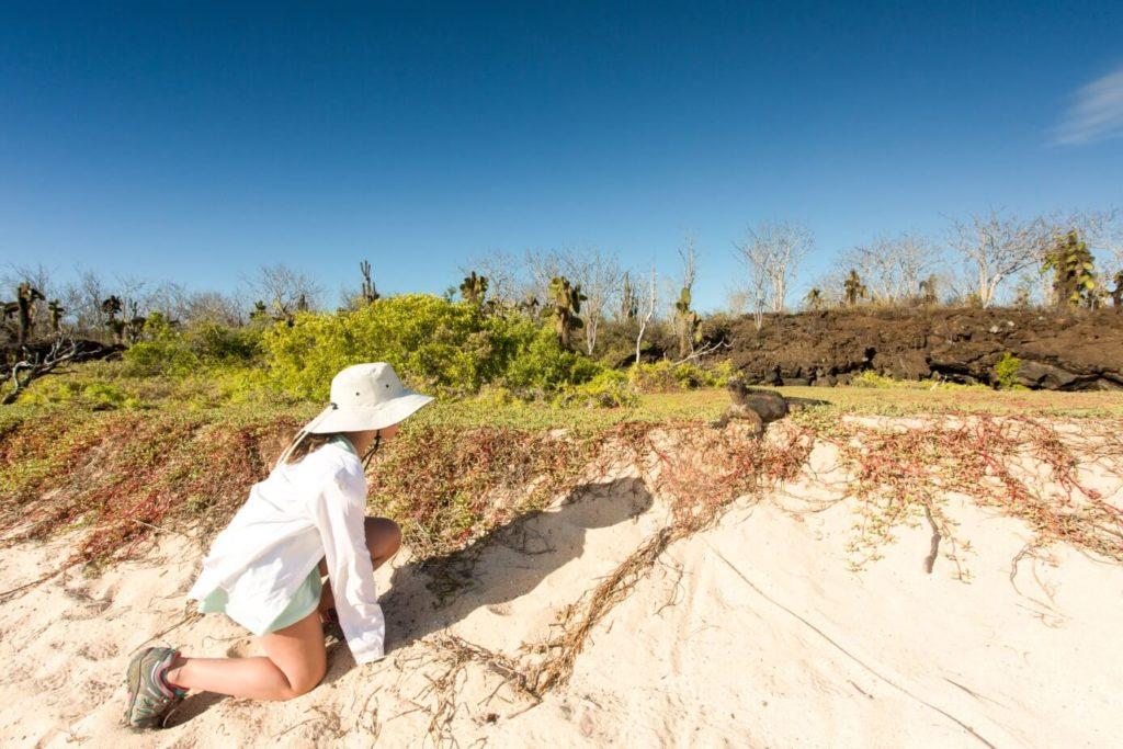 Galapagos islands activities: animal encounters