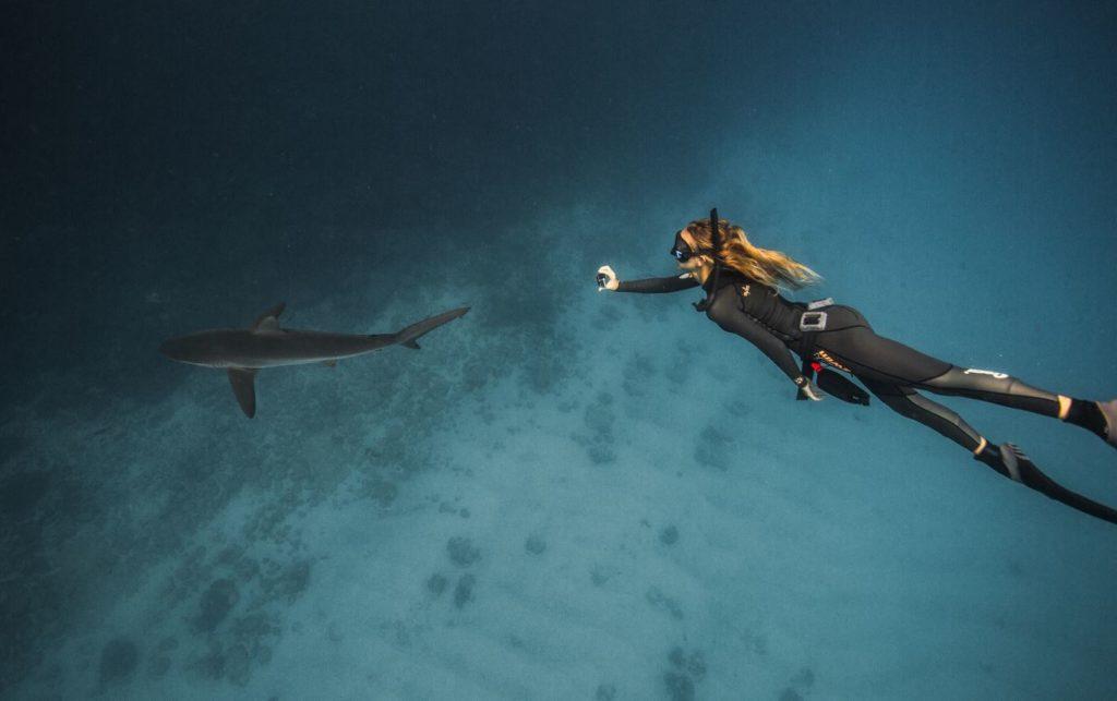 Galapagos water activities: diving