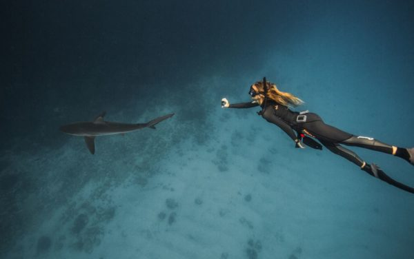 Woman diving near a shark in the Galapagos Islands.
