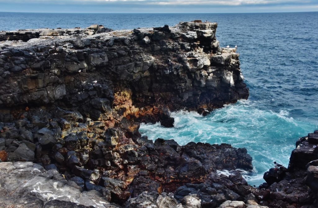 Galapagos islands: isabela island