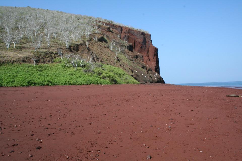 Galapagos beaches: Rabida
