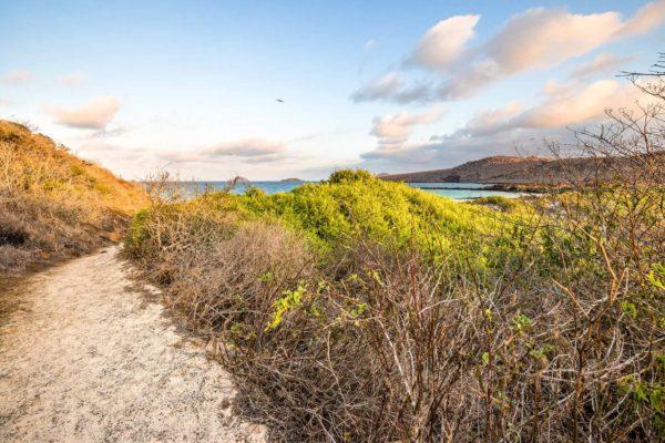Landscape of Floreana Island.