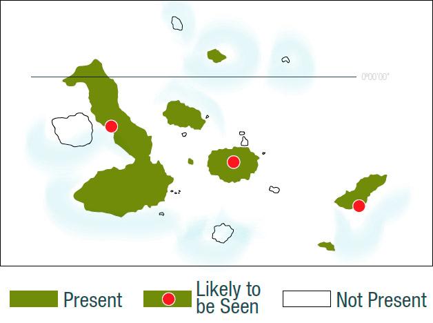 Giant tortoises' location map.