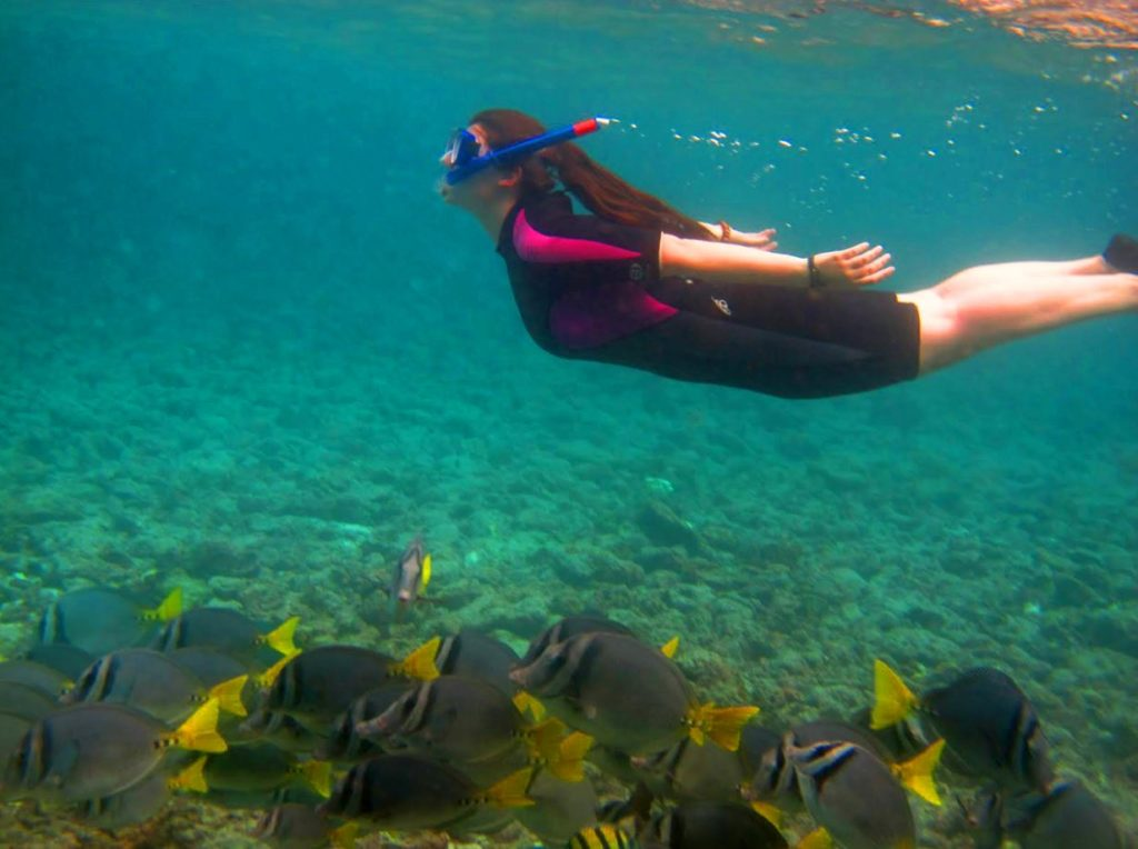 Galapagos activities: snorkeling