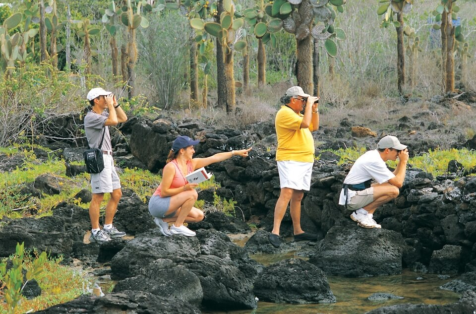 Guests in Galapagos spotting wildlife.