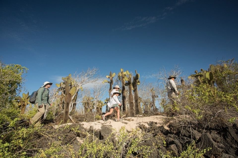 Santa Cruz's guests hiking on Isabela Island.