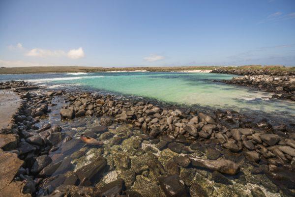 Punta Suarez on Española Island.
