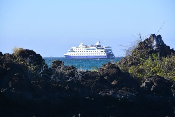 The Santa Cruz II Galapagos Cruise is considered an expedition vessel.