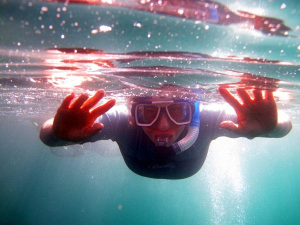 Snorkel on Genovesa in Galapagos.