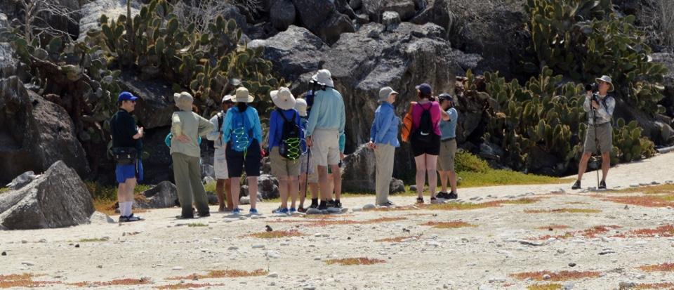 Guests of Santa Cruz II at Genovesa Island.