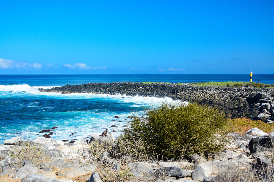 Española Island is visited during the Santa Cruz's Eastern Galapagos Itinerary.