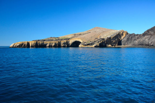 Punta Vicente Roca is located at Isabela Island.