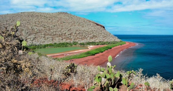 Rabida Island landscape