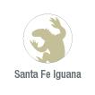 Santa Fe iguana