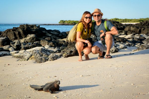 Marine iguana with guests