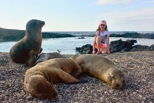 A kid with Galapagos sea lions