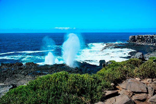 Española Island's famous blowhole in the Galapagos archipelago