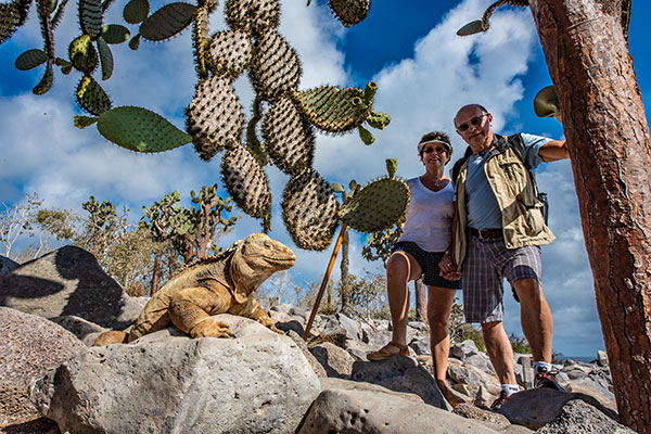 Couple posing with Santa Fe Island's endemic land iguana in Galapagos